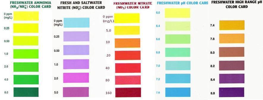 Api test kit color chart arofanatics fish talk forums